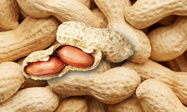 5.5 Minute LC-MS/MS Analysis of Mycotoxins in Peanut Powder
